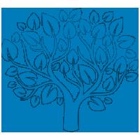 Интернет-магазин товаров для сада и огорода PlantShip